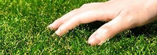 人工芝の種類